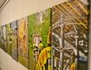 Ausstellungseröffnung-(10)