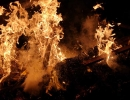 g3-Verbrennung-Heringsessen-(33)