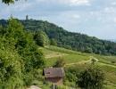 Heppenheim-Weinberge-Starkenburg_Foto-Roland-Robra