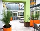 Die-nicht-begehbare-Dachterrasse-wird-zum-Dachgarten