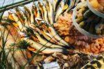 Meeresfrüchte, Fladenbrot, Peperoni, Saftige Truthahn-Cordon Bleu, Kartoffeln und Feldsalat