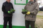 Gartenwettbewerb der Siedlergemeinschaft Viernheim