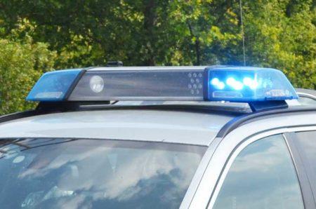 Viernheim: Beim Gassi gehen beleidigt und geschlagen Polizei sucht zwei Männer im Mercedes