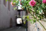 Weinheim: Weinheim noch schöner machen