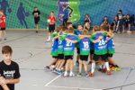 Männlichen D-Jugendhandballer des  TSV/Amicitia Viernheim weiter auf der Erfogsspur