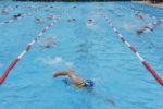 Triathlon Award: Beste Sprint-/Kurzdistanz, jetzt ABSTIMMEN für den Viernheimer V-Card Triathlon